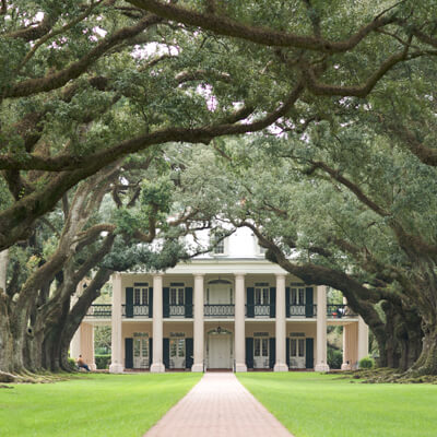 Photo of a grand estate viewed through a tree lined avenue by Ian Wagg on Unsplash